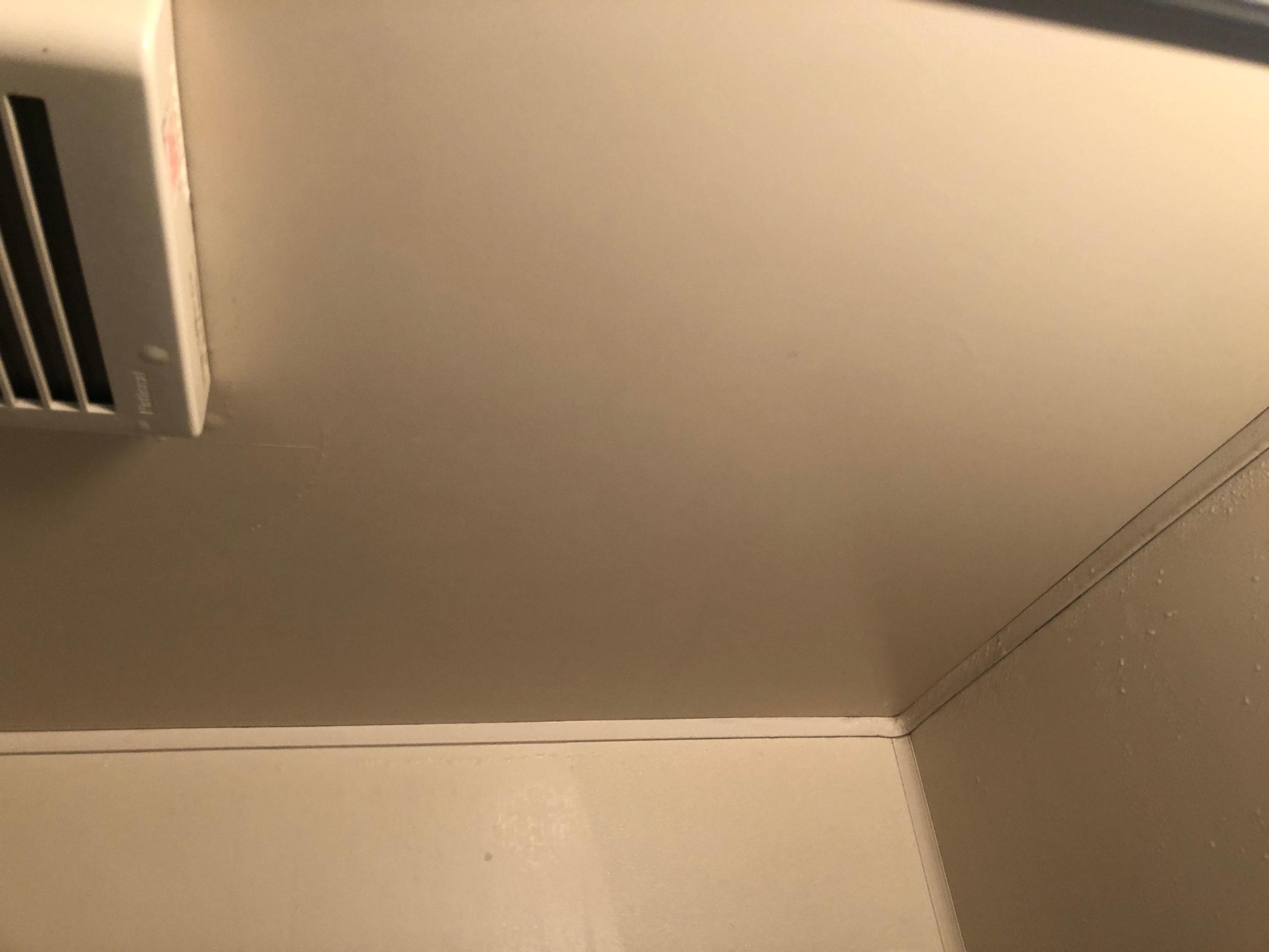 結露取りワイパーでバスルームの天井の水滴もきれいに取れる